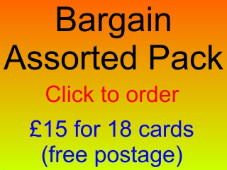 Bargain Assorted Pack